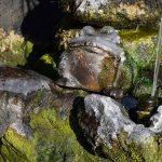 噴水の陶器のカエルも凍っている