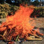 燃える炎 池上どんど焼き