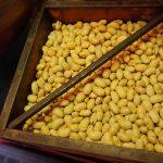 豆まきの福豆