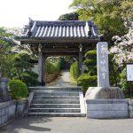 山門の桜 2021年4月の写真