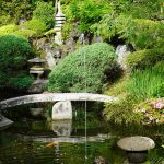 中庭の池と噴水